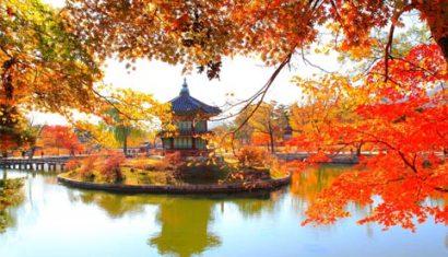 Điểm đến không thể bỏ lỡ khi tới Hàn Quốc mùa thu
