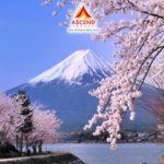 Du lịch Nhật Bản-Cung Đường Vàng